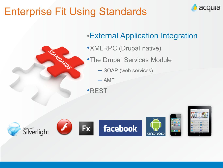 Enterprise Fit Using Standards
