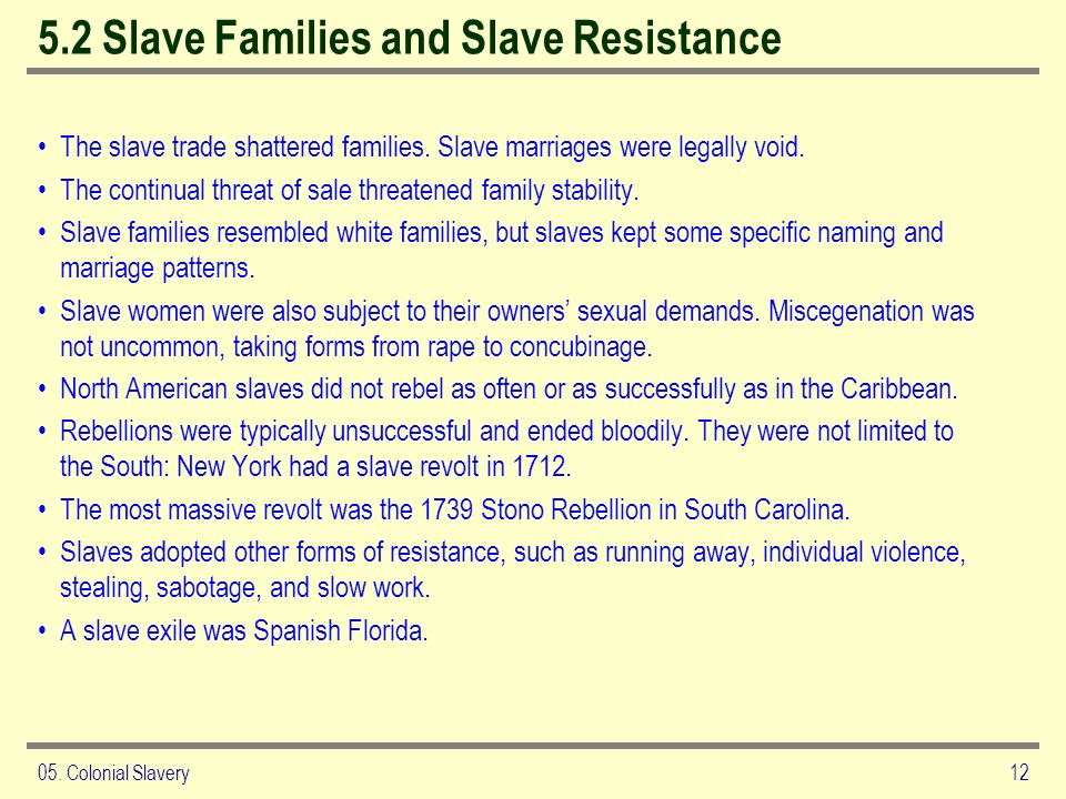 5.2 Slave Families and Slave Resistance