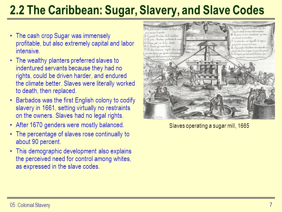 2.2 The Caribbean: Sugar, Slavery, and Slave Codes