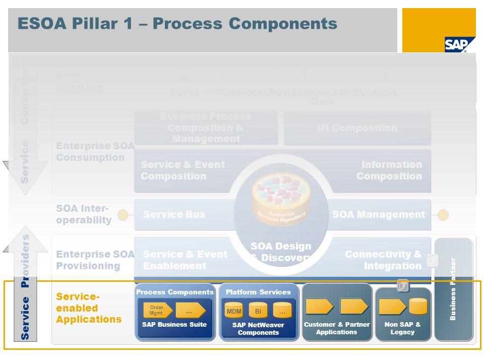 ESOA Pillar 1 – Process Components