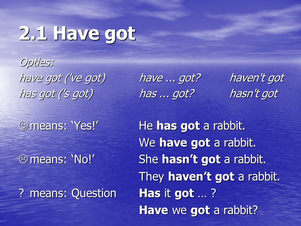 2.1 Have got  means: 'Yes!' He has got a rabbit.
