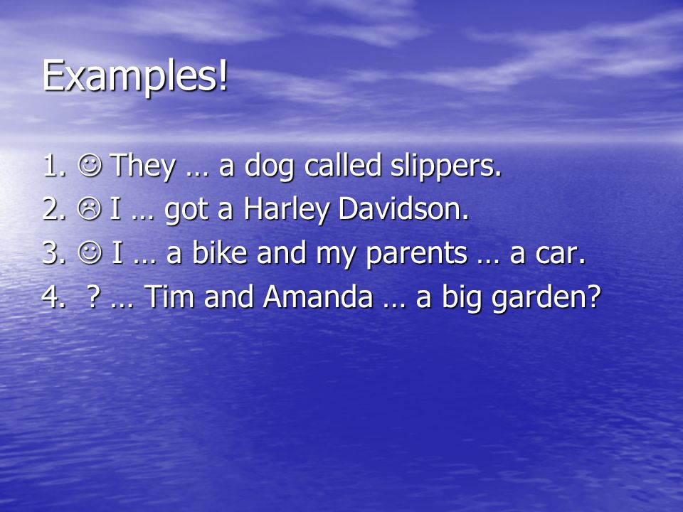 Examples! 1.  They … a dog called slippers.