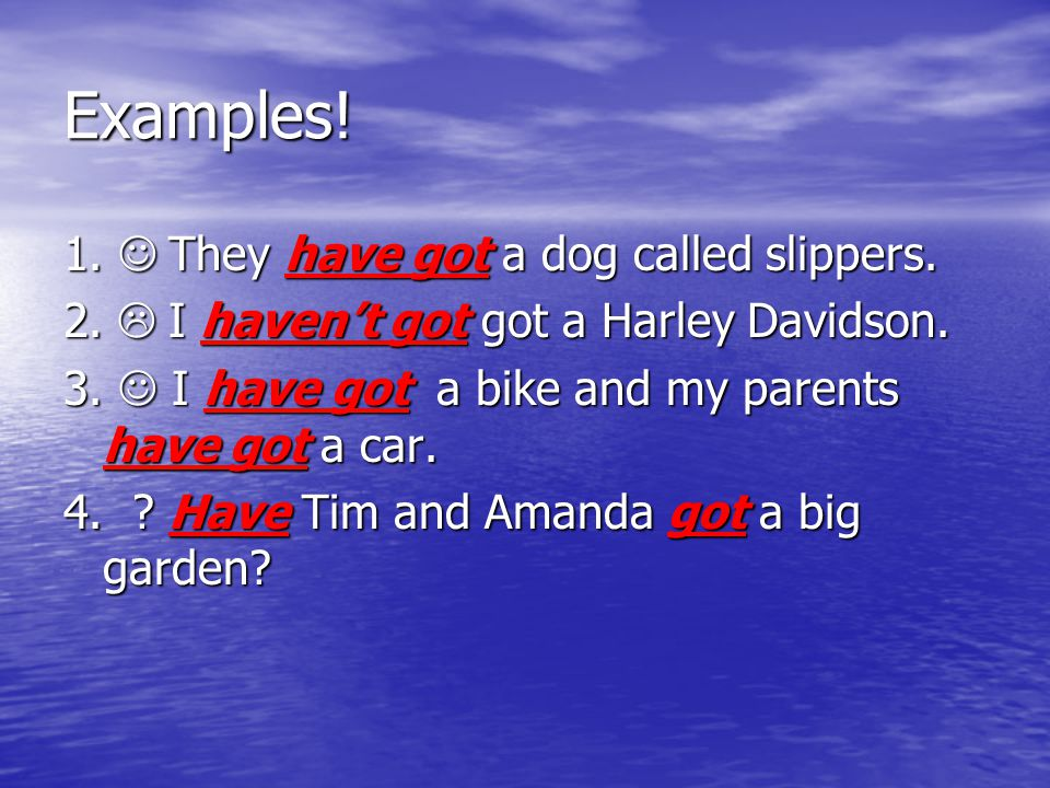Examples! 1.  They have got a dog called slippers.