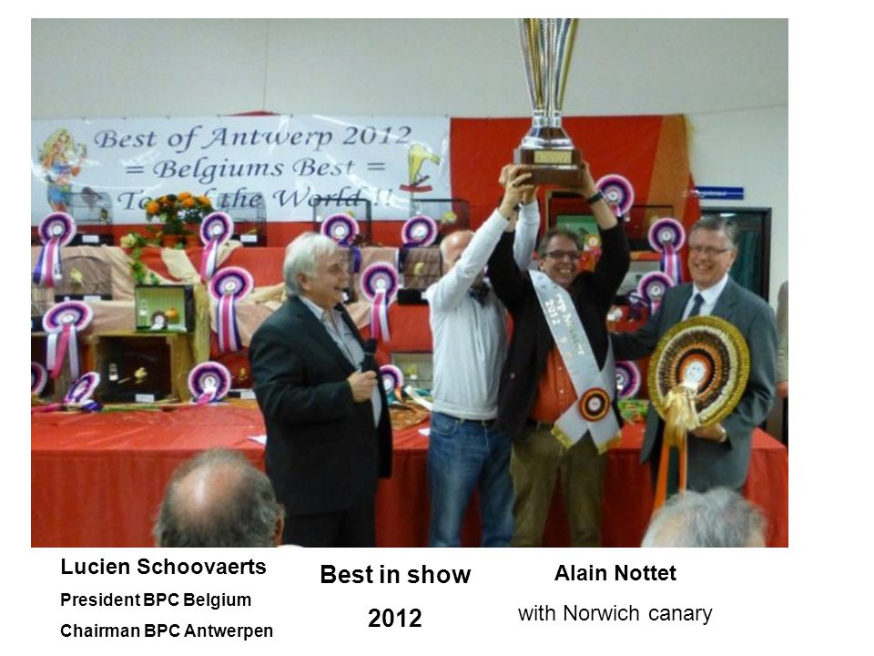 Best in show 2012 Lucien Schoovaerts Alain Nottet with Norwich canary