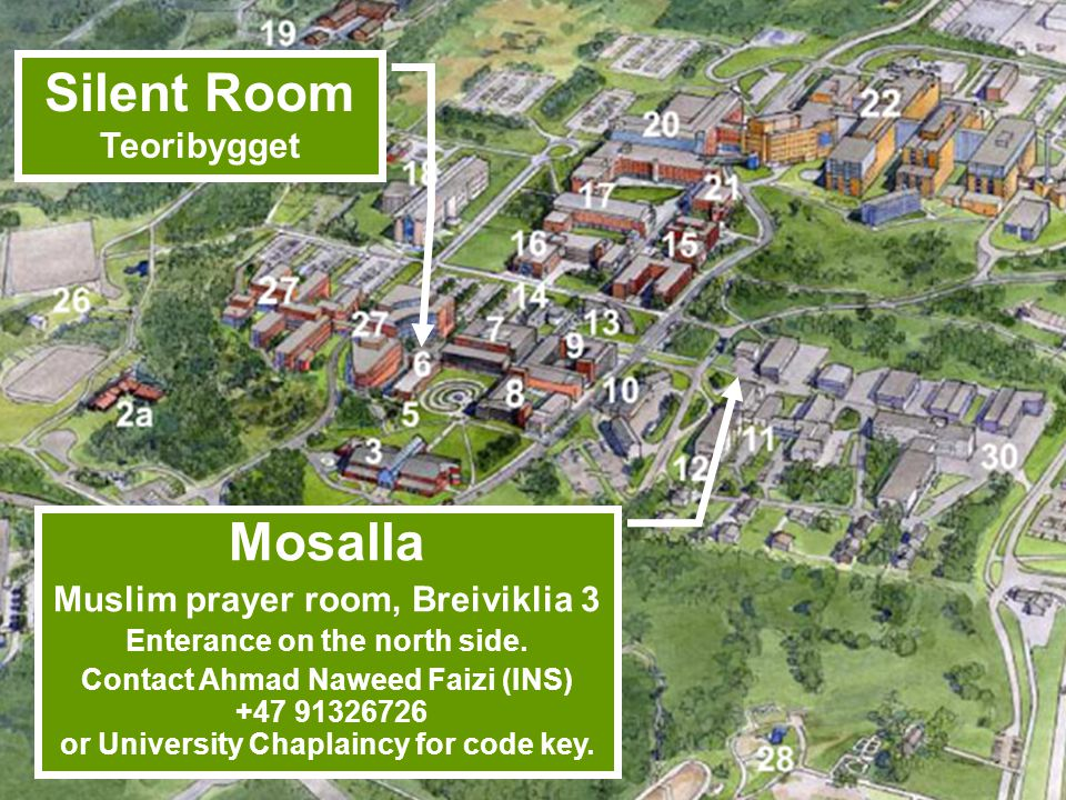 Muslim prayer room, Breiviklia 3 Enterance on the north side.