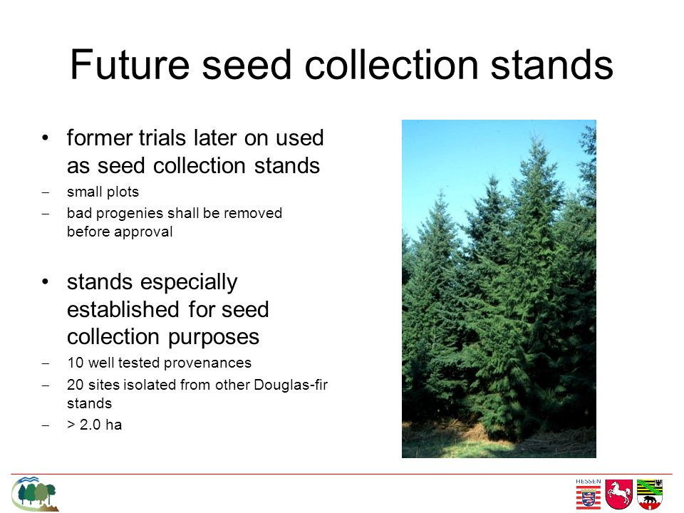 Future seed collection stands