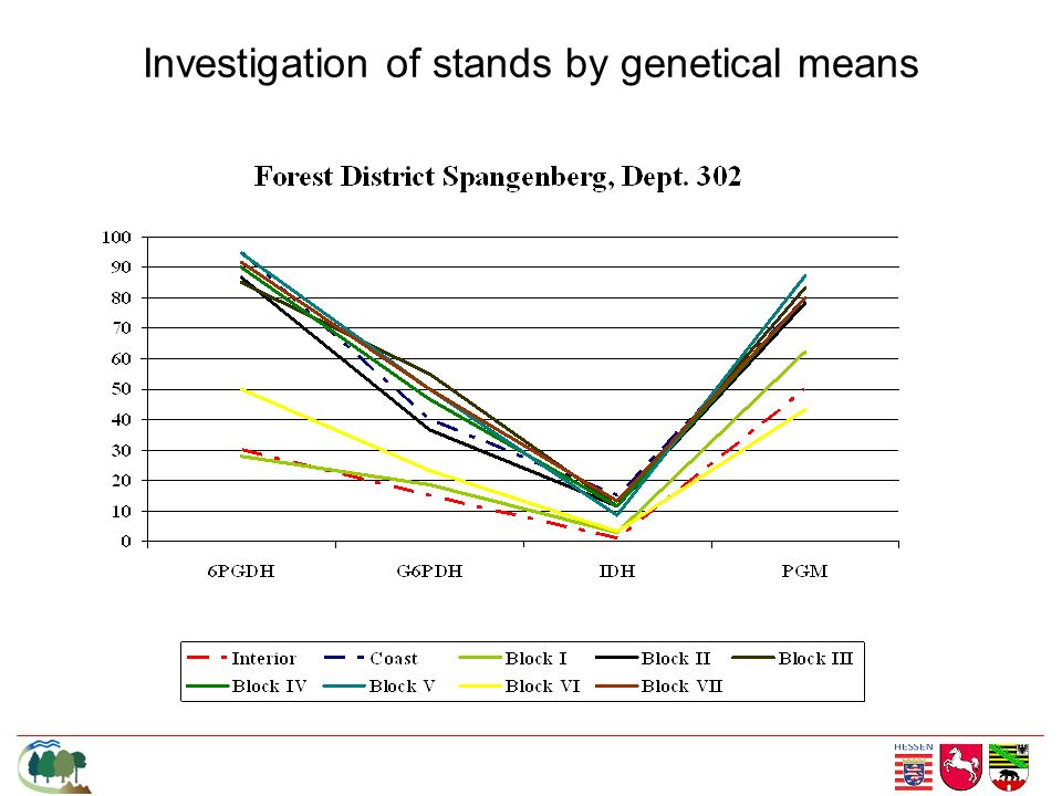 Investigation of stands by genetical means