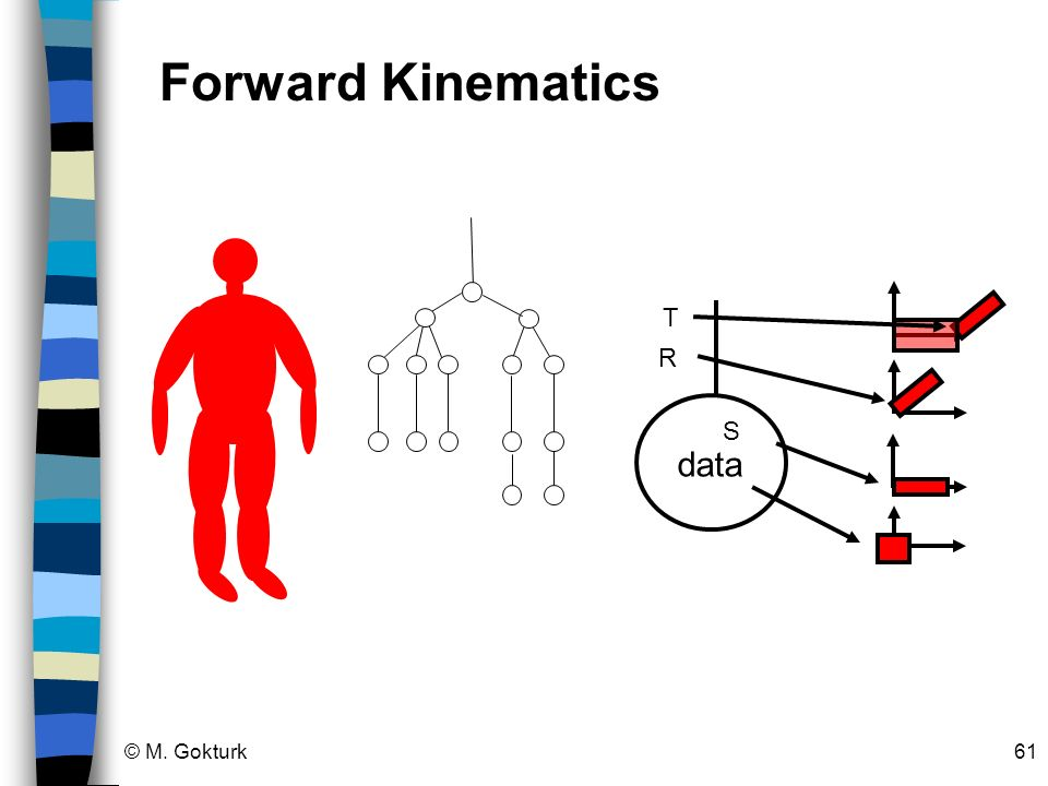 Forward Kinematics T data R S © M. Gokturk