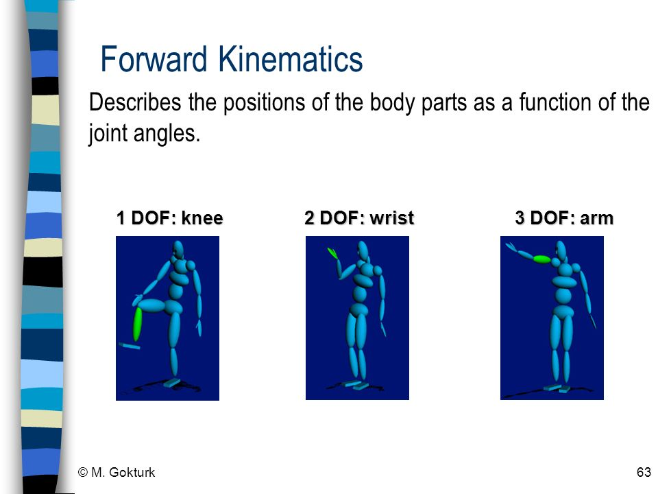 Forward Kinematics Describes the positions of the body parts as a function of the joint angles. 1 DOF: knee.