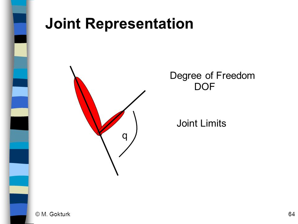 Joint Representation q Degree of Freedom DOF Joint Limits © M. Gokturk