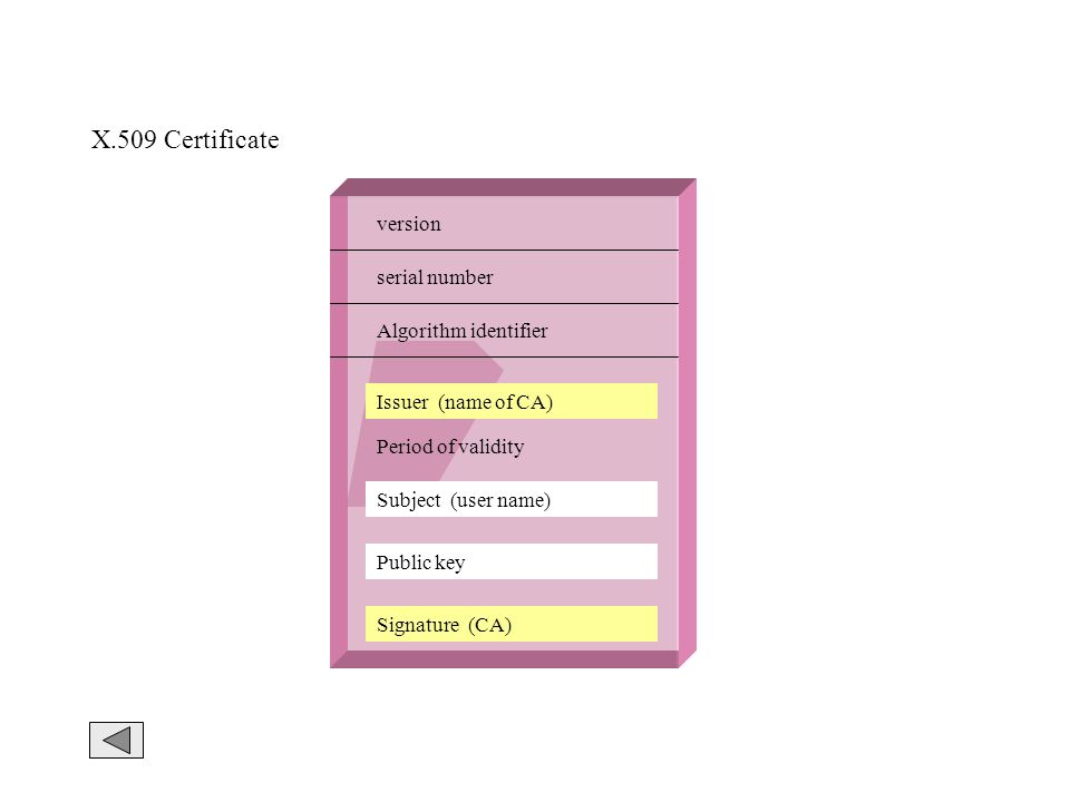 X.509 Certificate version serial number Algorithm identifier