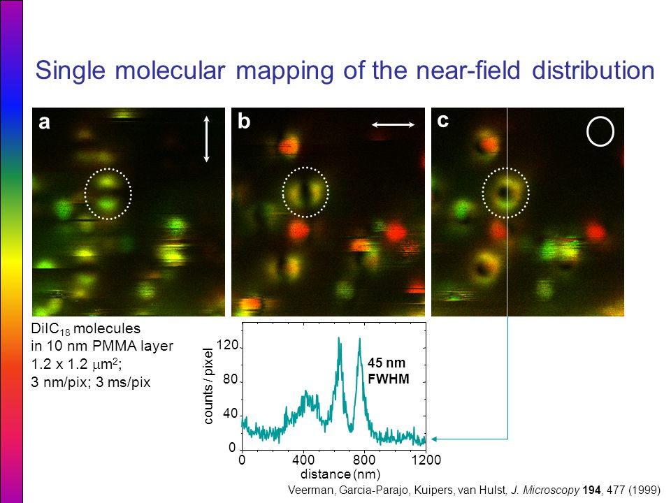 Single molecular mapping of the near-field distribution