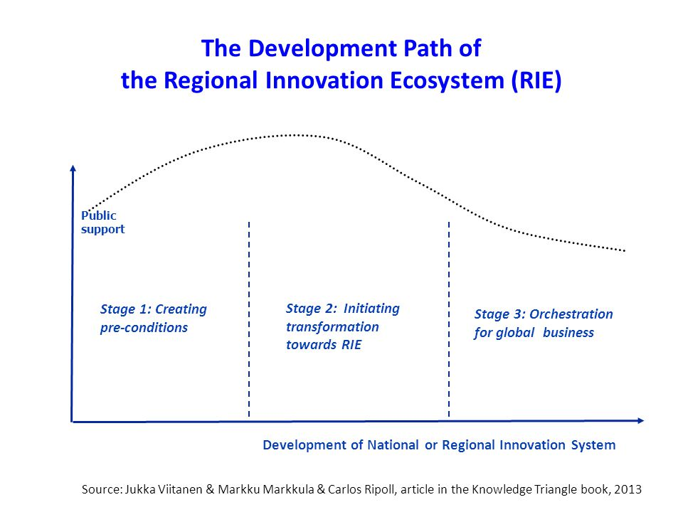The Development Path of the Regional Innovation Ecosystem (RIE)