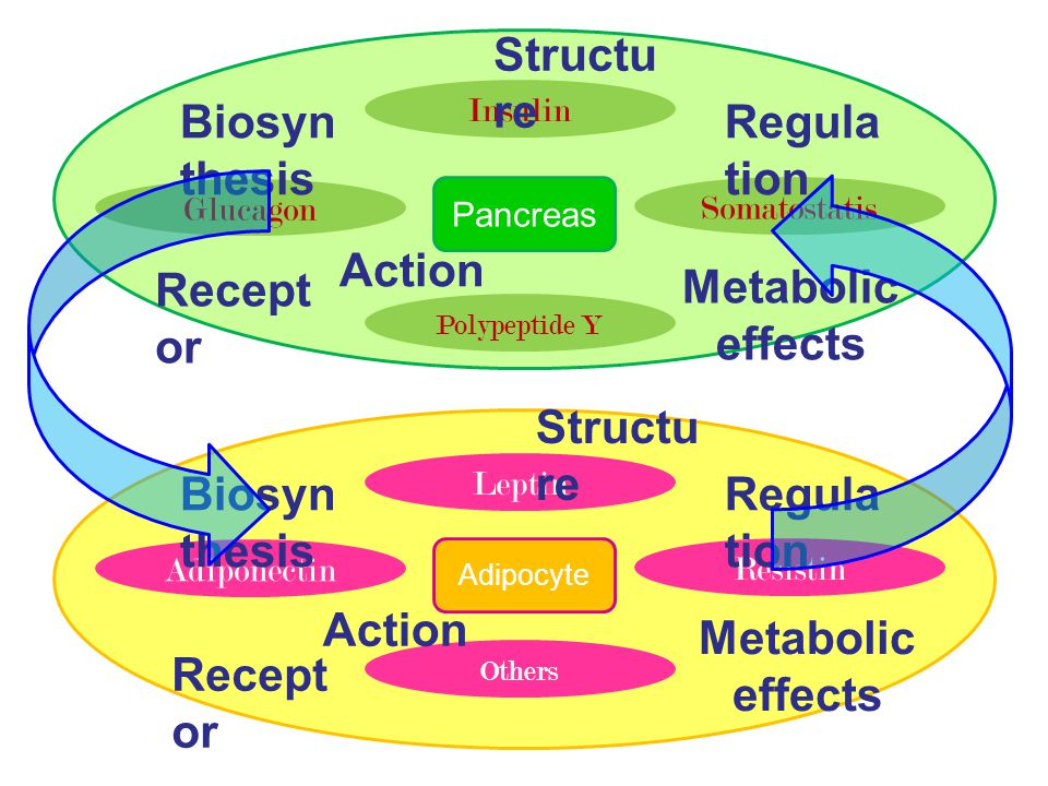 Metabolic effects Metabolic effects