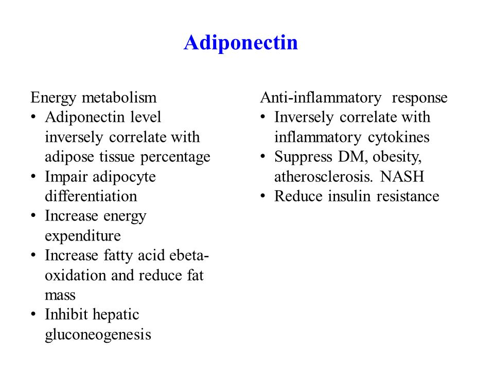 Adiponectin Energy metabolism