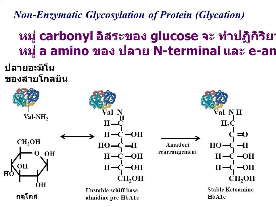 หมู่ carbonyl อิสระของ glucose จะ ทำปฏิกิริยาอย่างช้า ๆ กับ