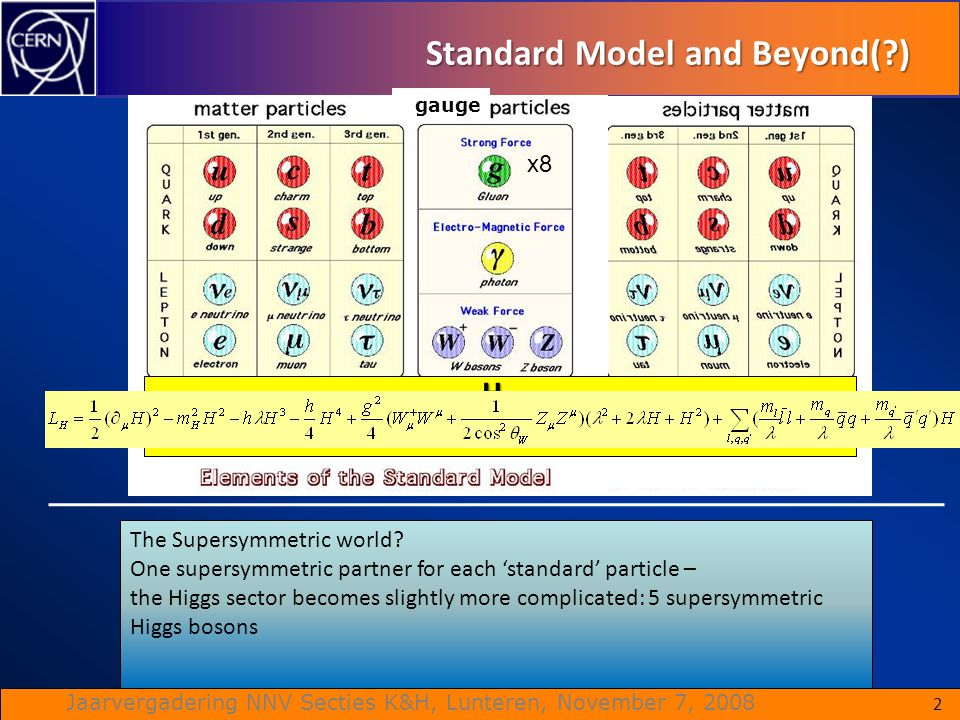 Standard Model and Beyond( )