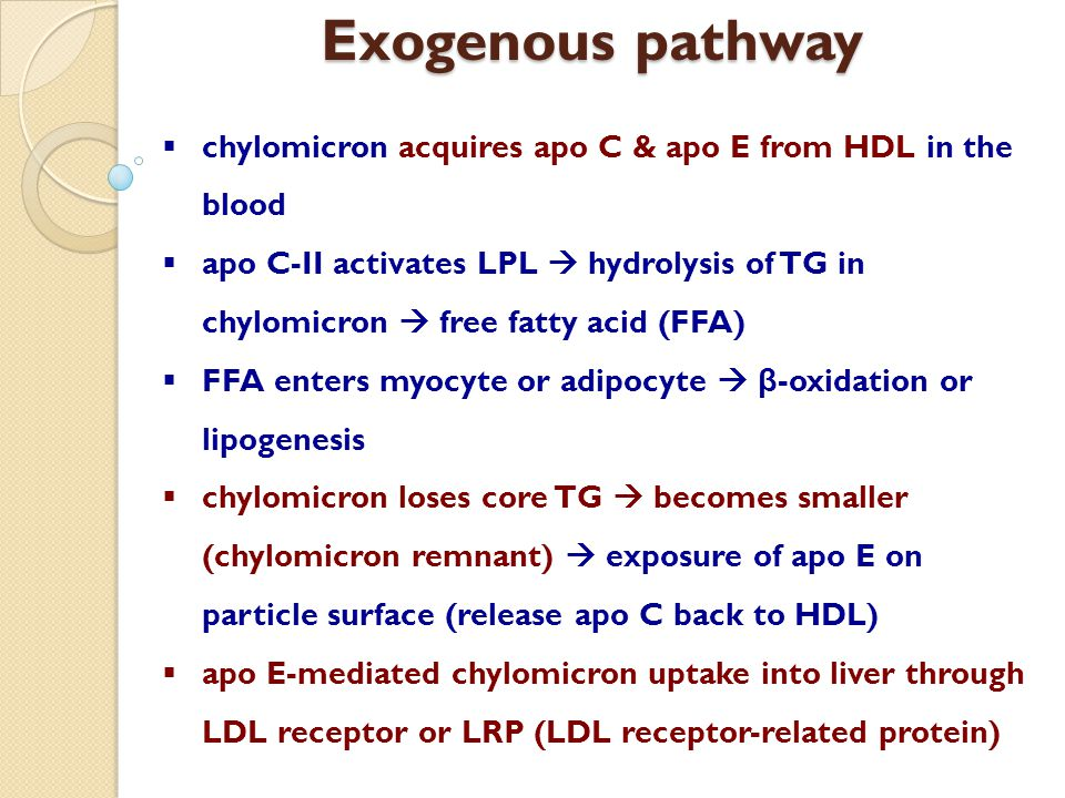 Exogenous pathway chylomicron acquires apo C & apo E from HDL in the blood.