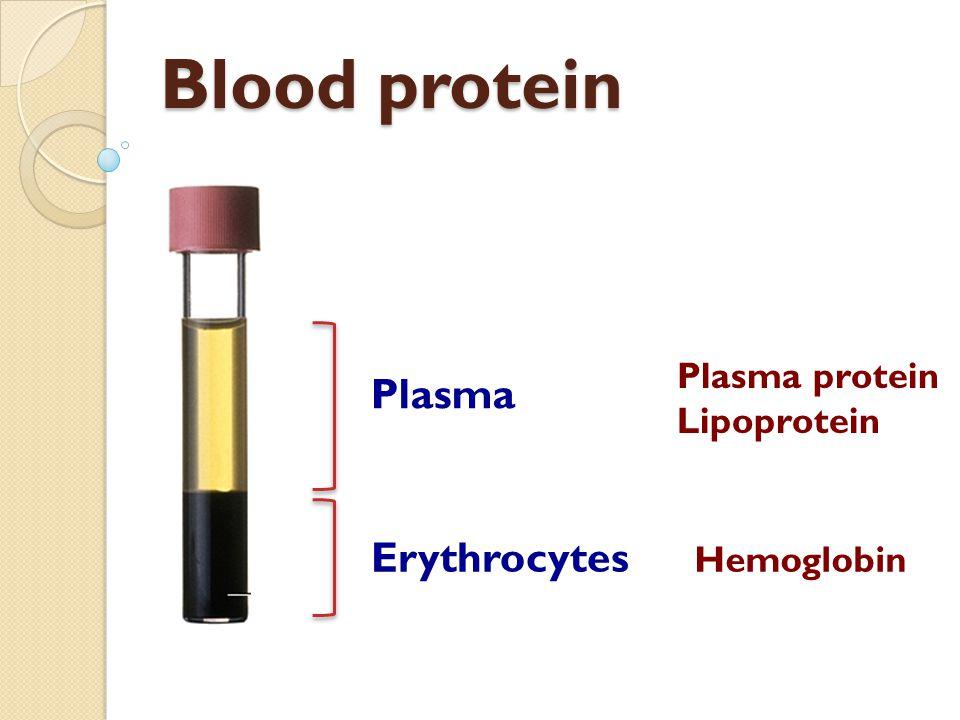 Blood protein Plasma Erythrocytes Plasma protein Lipoprotein