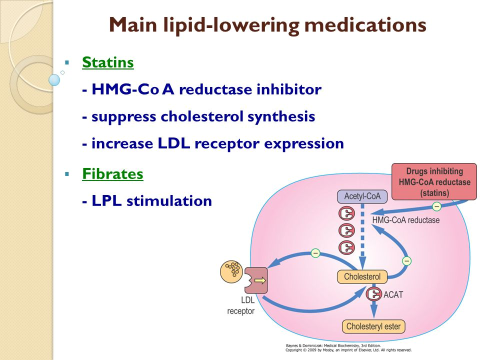 Main lipid-lowering medications