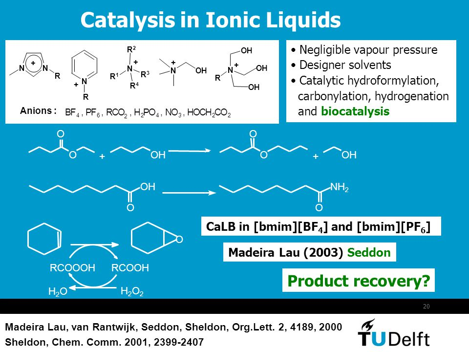 Catalysis in Ionic Liquids
