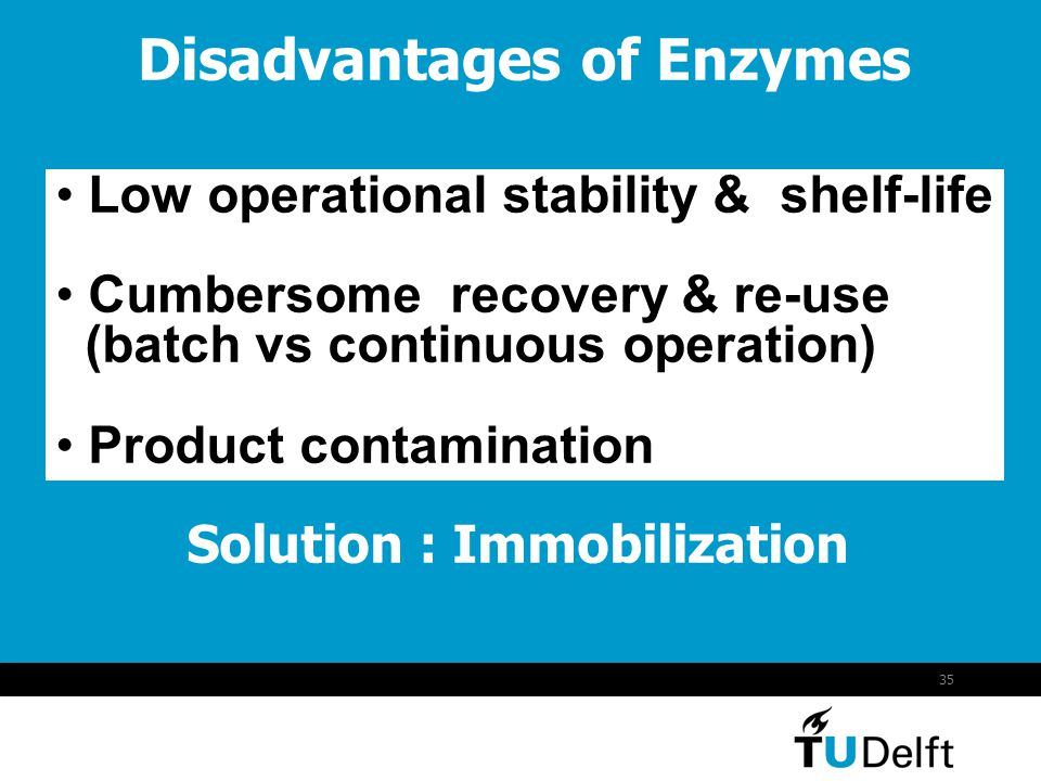 Disadvantages of Enzymes