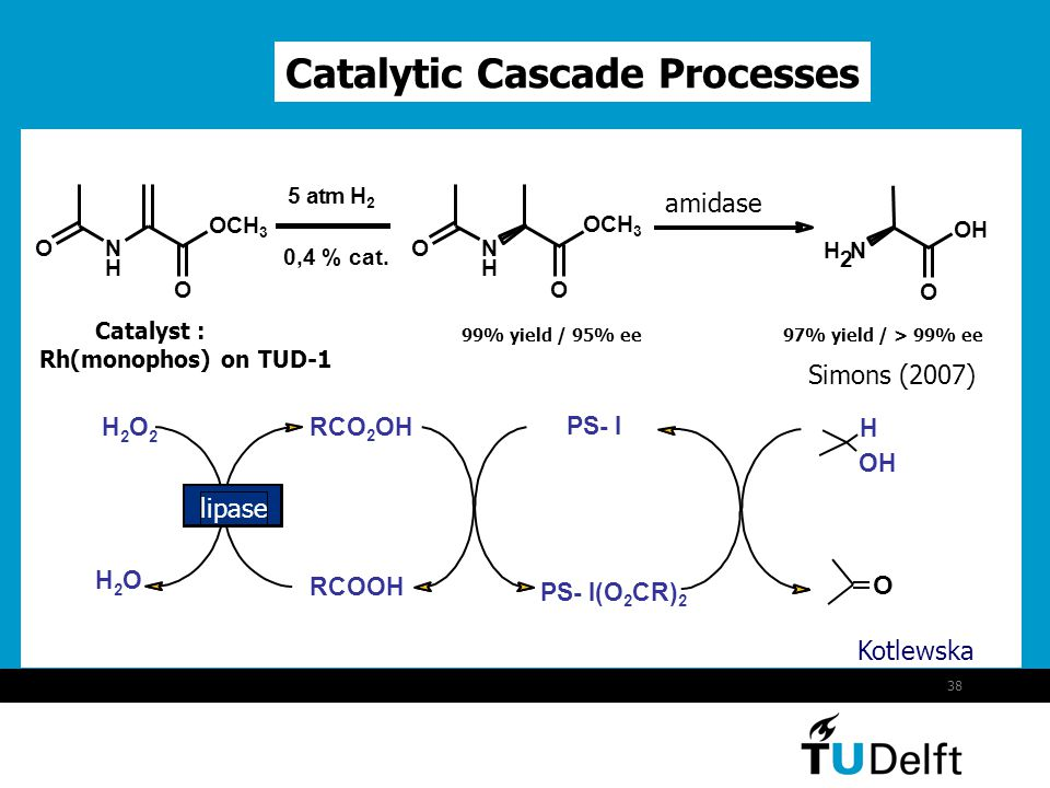 Catalytic Cascade Processes