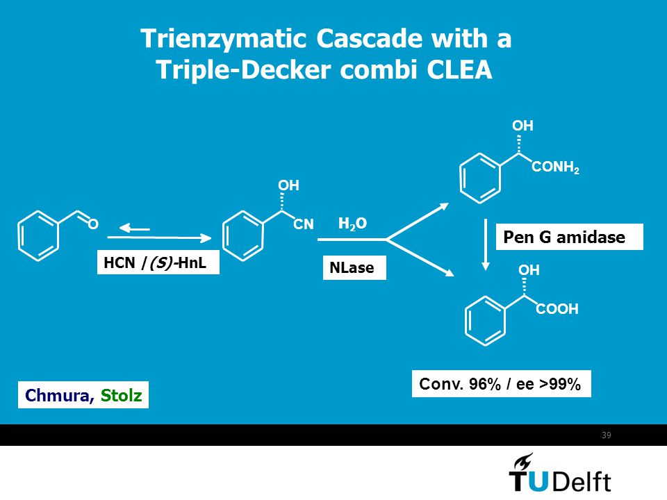 Trienzymatic Cascade with a Triple-Decker combi CLEA
