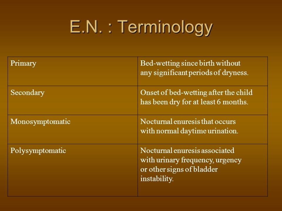 E.N. : Terminology Primary