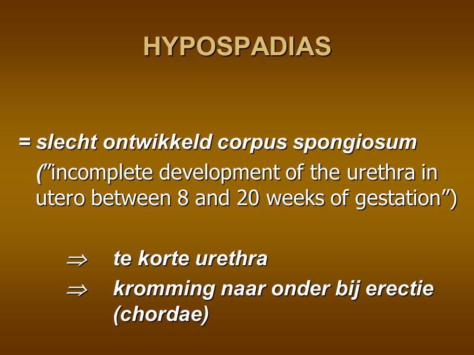 HYPOSPADIAS = slecht ontwikkeld corpus spongiosum