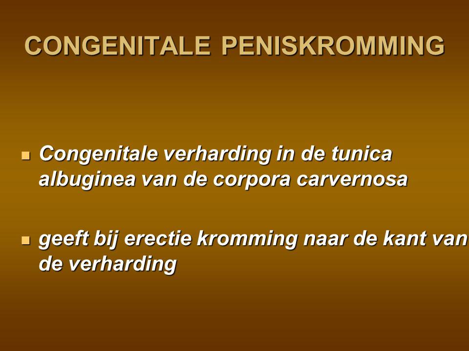 CONGENITALE PENISKROMMING
