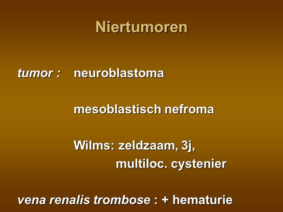 Niertumoren tumor : neuroblastoma mesoblastisch nefroma