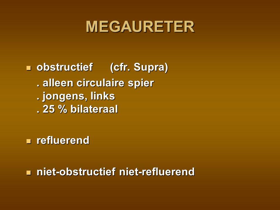 MEGAURETER obstructief (cfr. Supra)