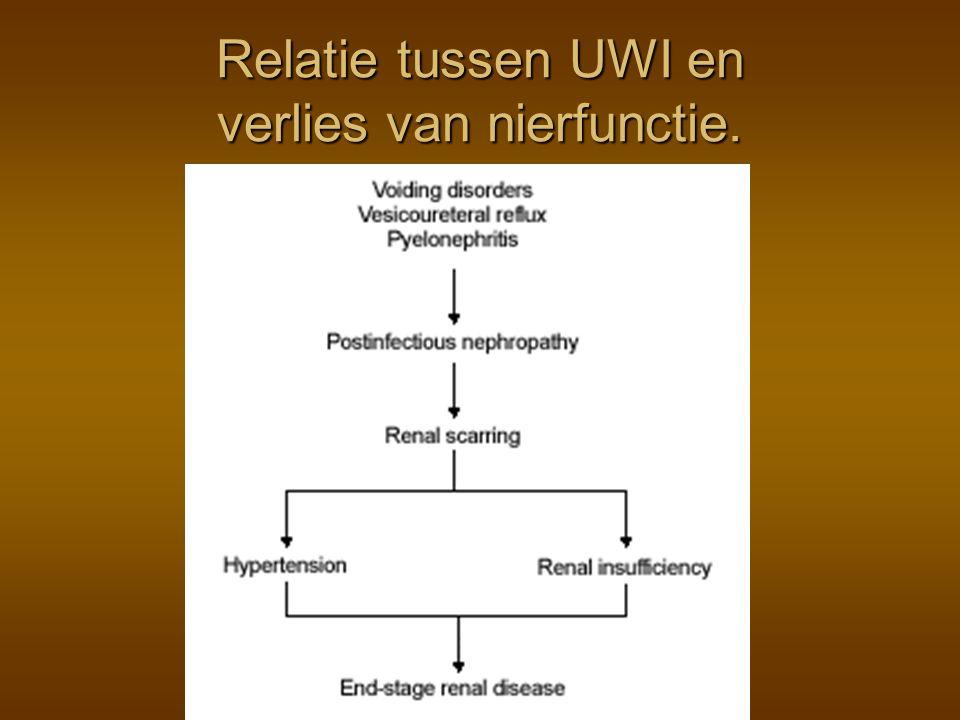 Relatie tussen UWI en verlies van nierfunctie.