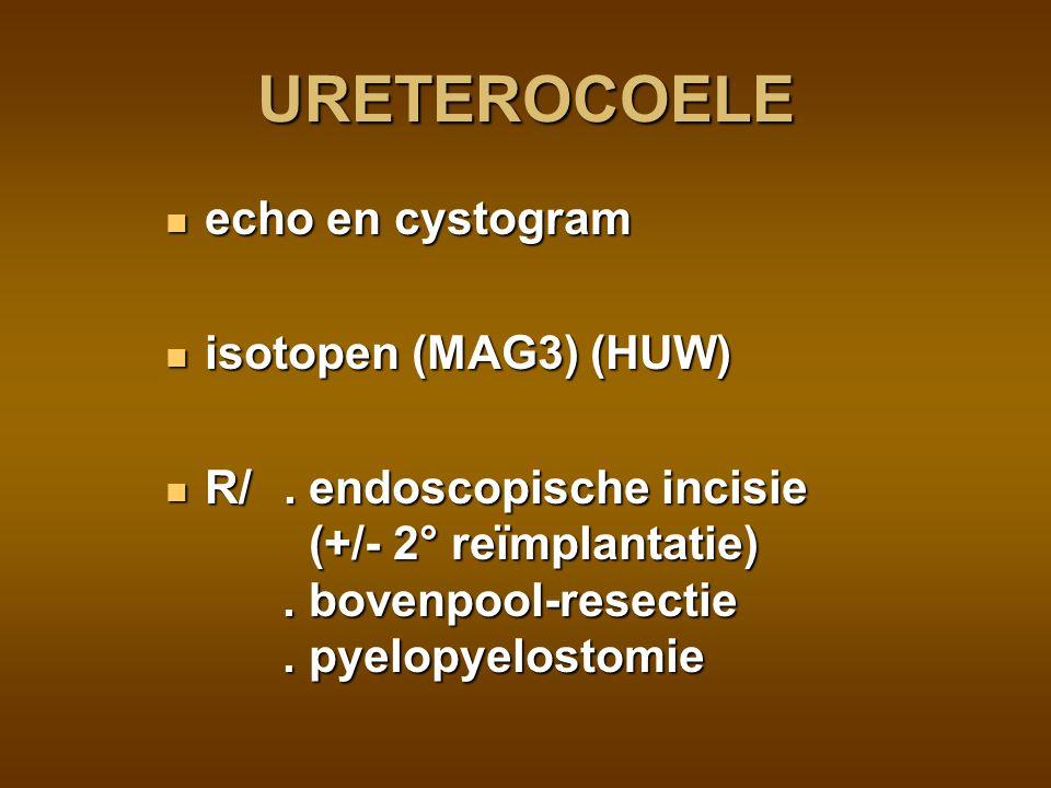 URETEROCOELE echo en cystogram isotopen (MAG3) (HUW)