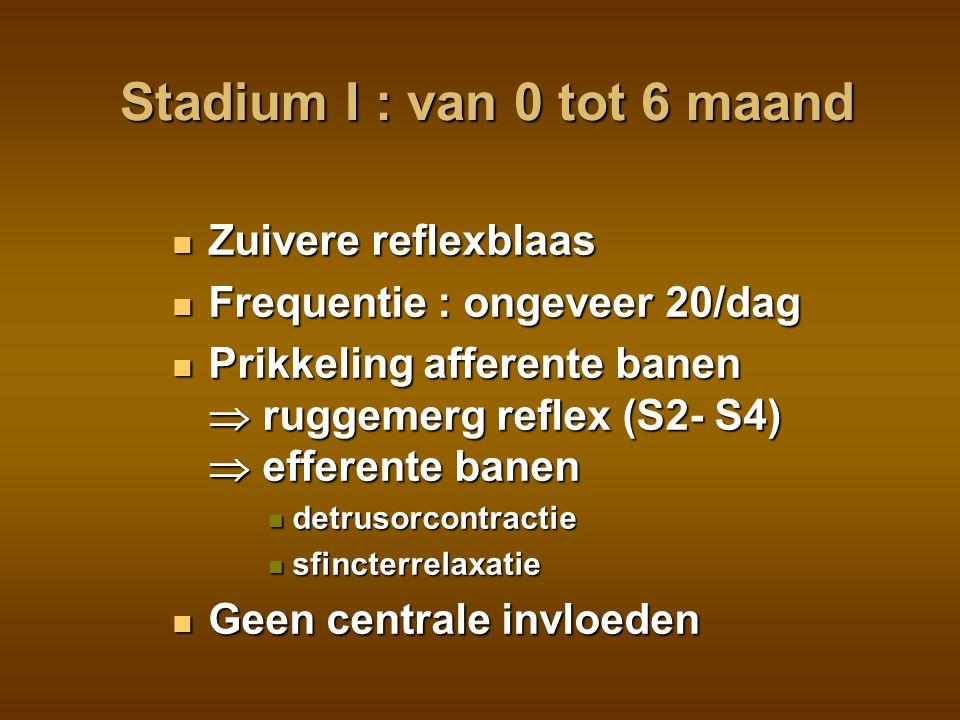 Stadium I : van 0 tot 6 maand