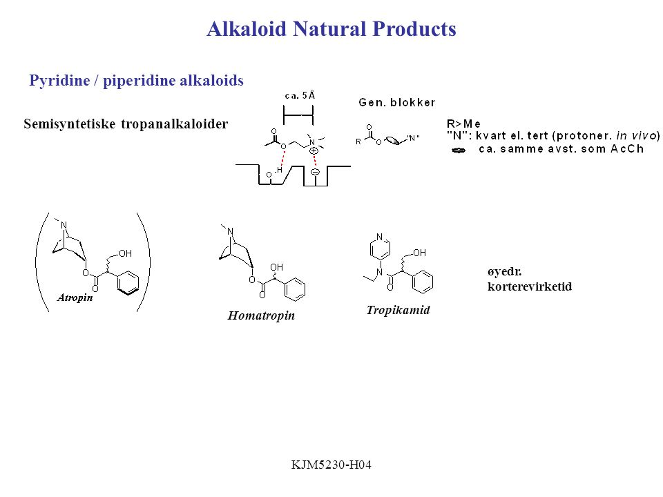 Alkaloid Natural Products