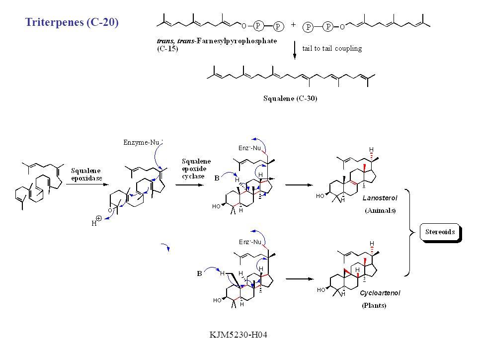 Triterpenes (C-20) KJM5230-H04