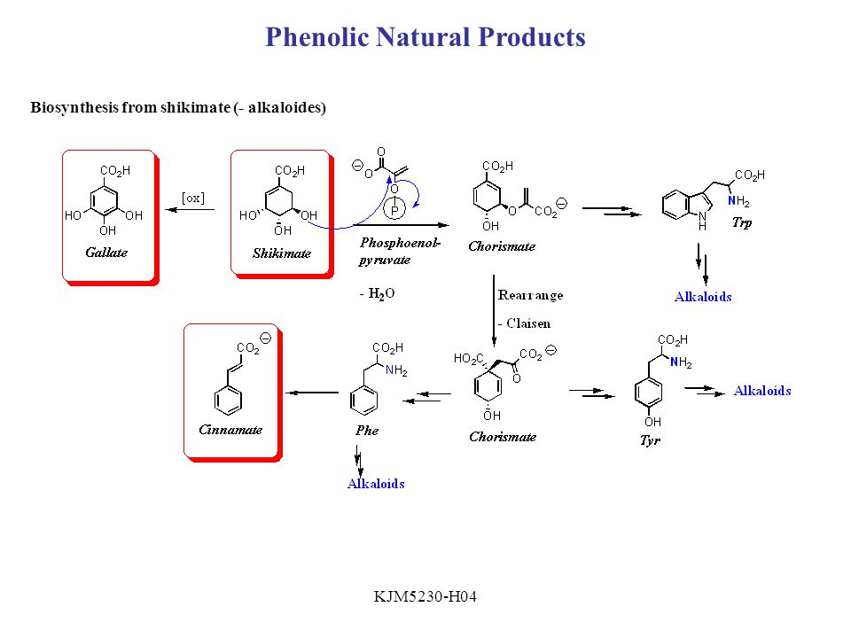 Phenolic Natural Products