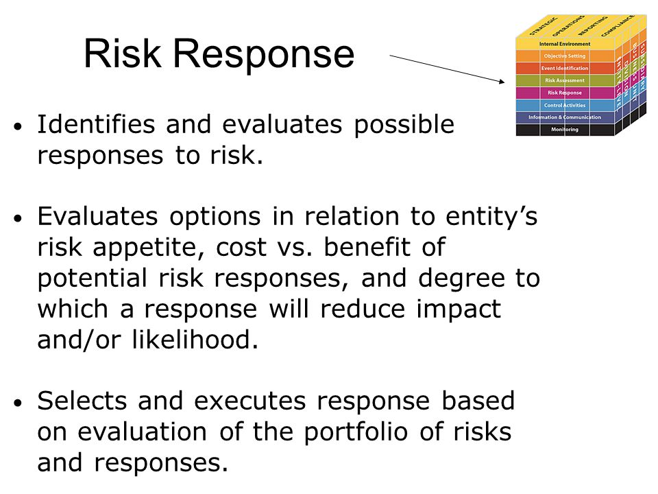 Risk Response Identifies and evaluates possible responses to risk.