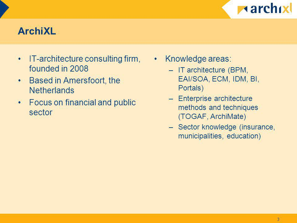 ArchiXL IT-architecture consulting firm, founded in 2008