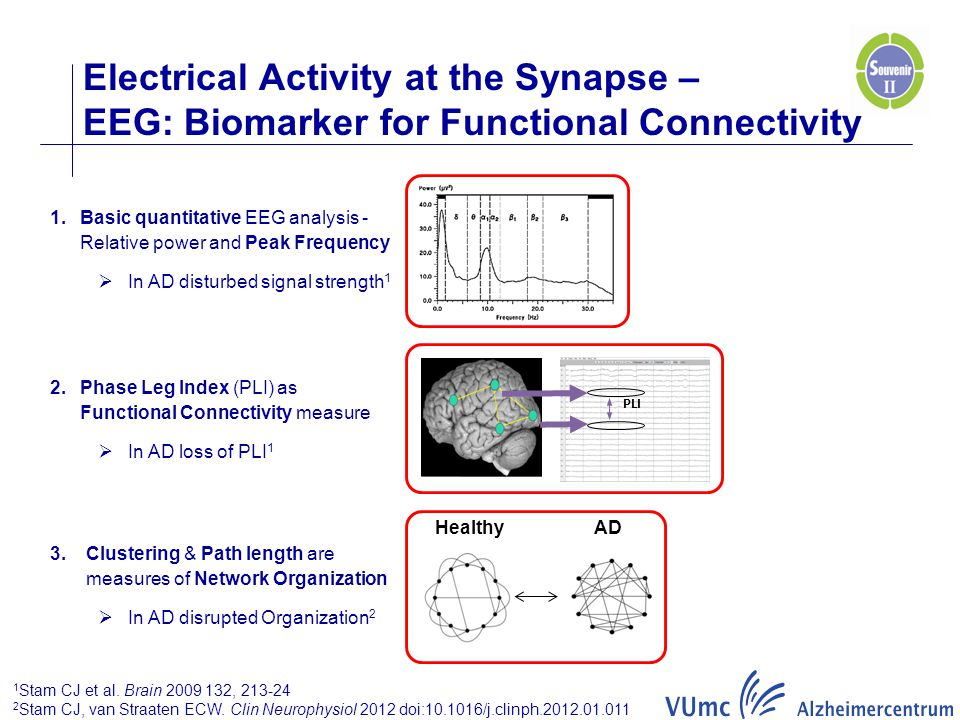 Electrical Activity at the Synapse – EEG: Biomarker for Functional Connectivity