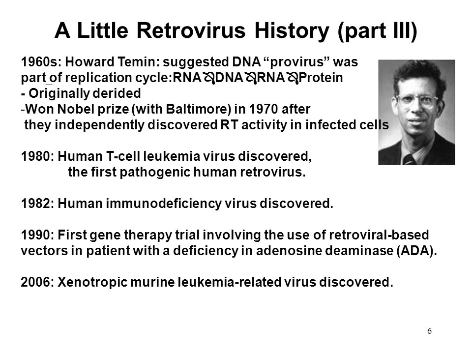 A Little Retrovirus History (part III)