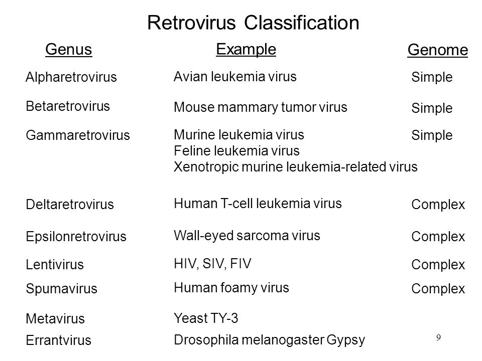 Retrovirus Classification
