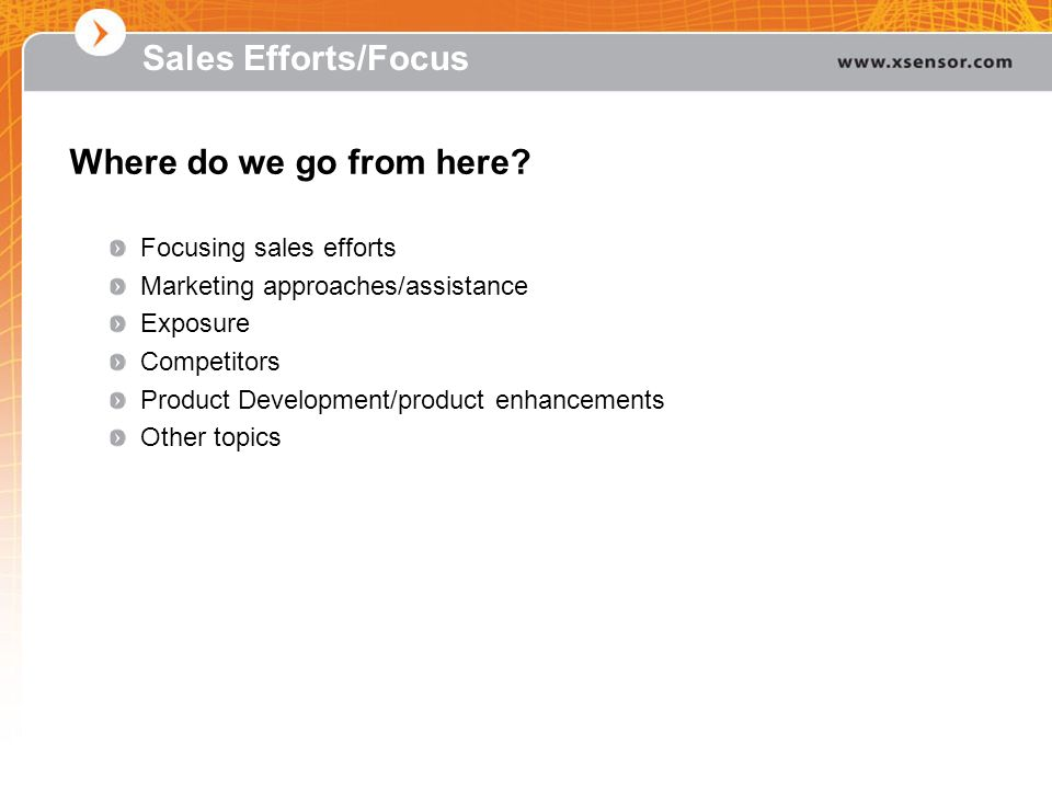Sales Efforts/Focus Where do we go from here Focusing sales efforts