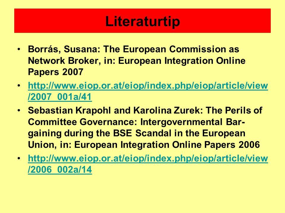 Literaturtip Borrás, Susana: The European Commission as Network Broker, in: European Integration Online Papers 2007.