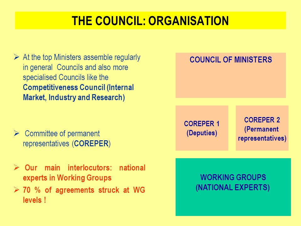 THE COUNCIL: ORGANISATION