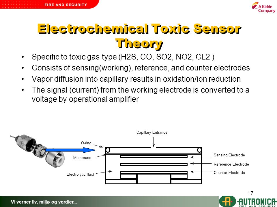 Electrochemical Toxic Sensor Theory