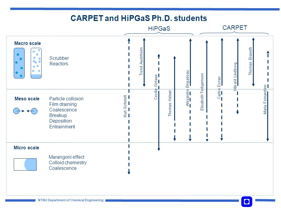 CARPET and HiPGaS Ph.D. students