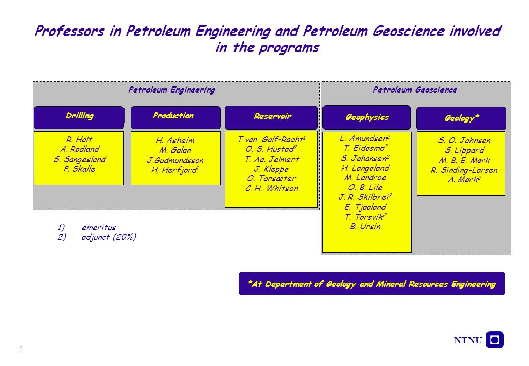 Professors in Petroleum Engineering and Petroleum Geoscience involved in the programs
